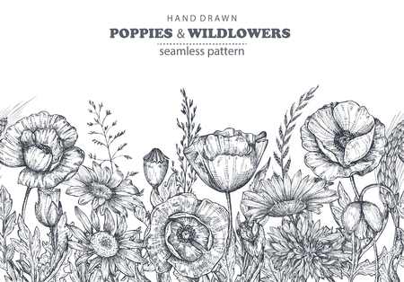 Vector seamless pattern with hand drawn poppy and other flowers and plants