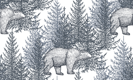 Vector seamless pattern with hand drawn bears and trees. Fir forest on white background. Monochrome illustration in sketch style.