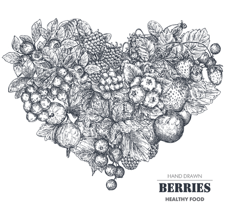 Vector illustration of hand drawn vector berries in heart form. Sketch style.