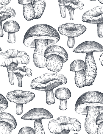 Vector seamless pattern with hand drawn forest mushrooms. Beautiful autumn endless illustration in sketch style for coloring book, textile, package.