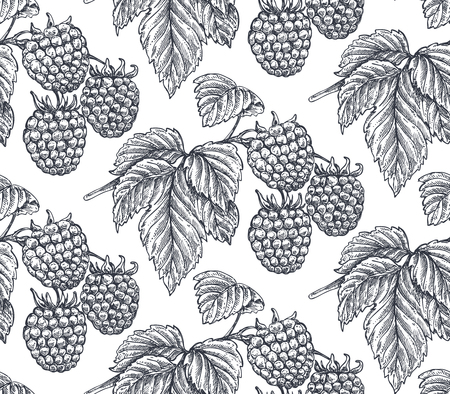 Vector seamless pattern with hand drawn raspberries in sketch style. Detailed vegetarian food drawing. Beautiful vintage endless background