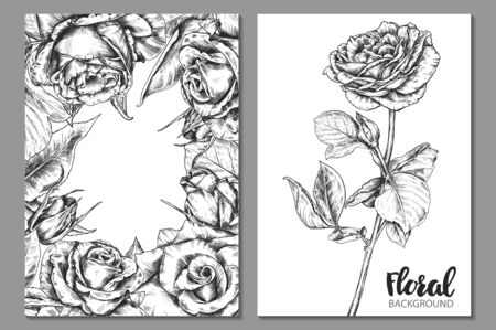 Collection of vector floral backgrounds for card or invitation with hand drawn rose flowers.