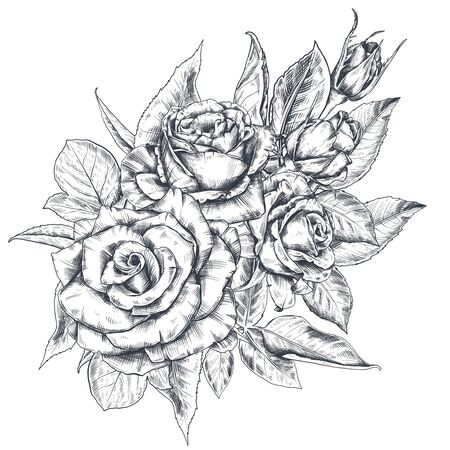 Hand drawn rose flowers bouquet isolated on white background.