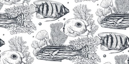 Vector monochrome seamless sea pattern with tropical fish