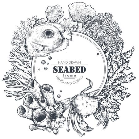 Monochrome frame with space for text and hand drawn underwater natural elements  イラスト・ベクター素材
