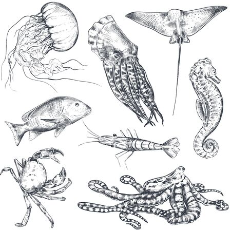 Vector monochrome seamless pattern with ocean and sea animals in sketch style.  イラスト・ベクター素材
