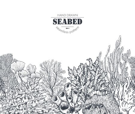 Vector monochrome seamless coral reef pattern with tropical algae, corals.  イラスト・ベクター素材