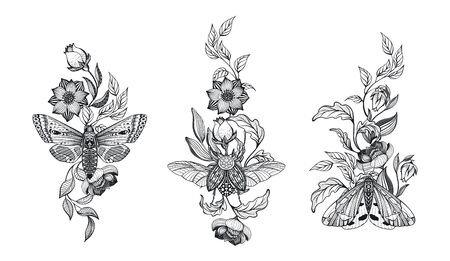 Collection of black and white moths and beetle, flowers, branches, isolated vector illustration.