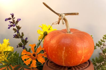 Fall decoration with pumpkins and marigolds