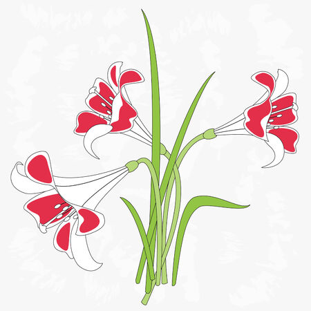 fragrant bouquet:  illustration of lilies