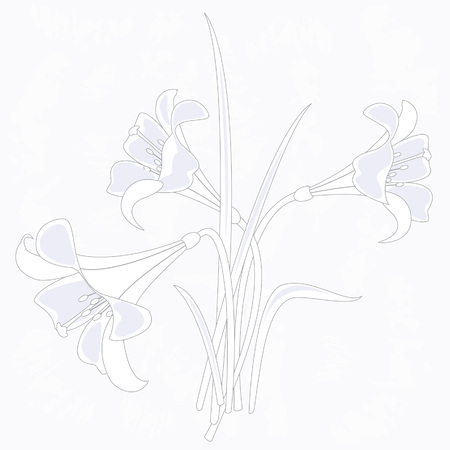 illustration of lilies