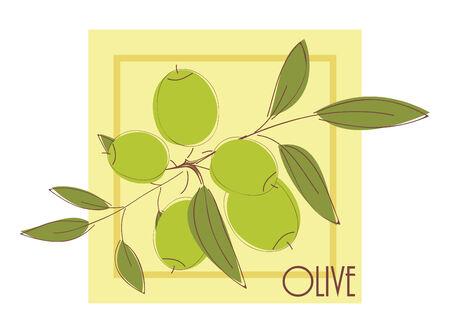 illustration with olives