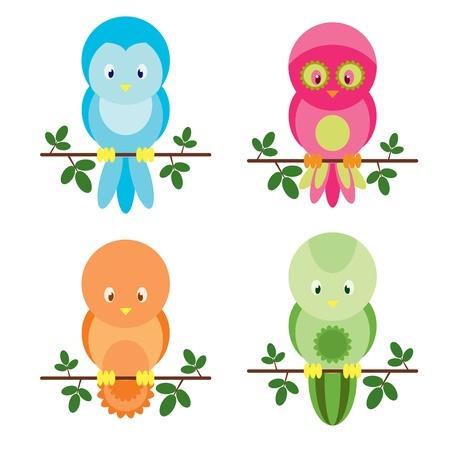 cute: Cute colorful four birds Illustration