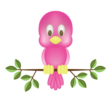 alone bird: Cute pink bird, isolated