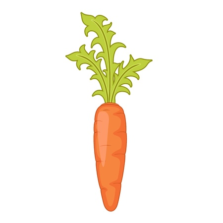 Zanahoria, aislado en blanco Ilustración de vector