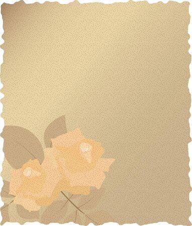 rosas naranjas: Papel de la vendimia con las rosas de color naranja Vectores