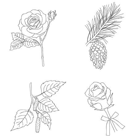Hand drawn vintage plants