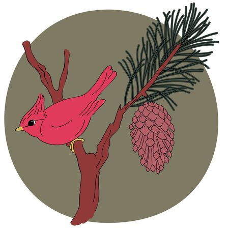 forest clipart: Vector illustration of cardinal on a branch