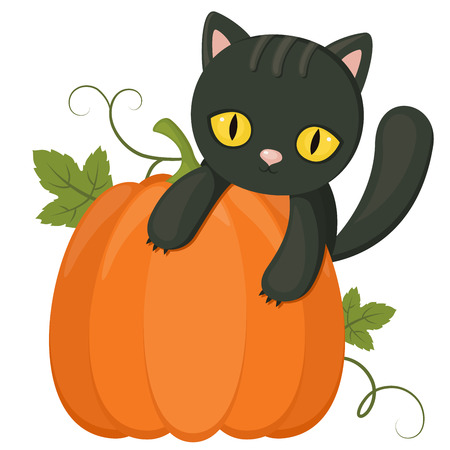 Halloween symbols: black cat over a pumpkin. Isolated on white Illustration