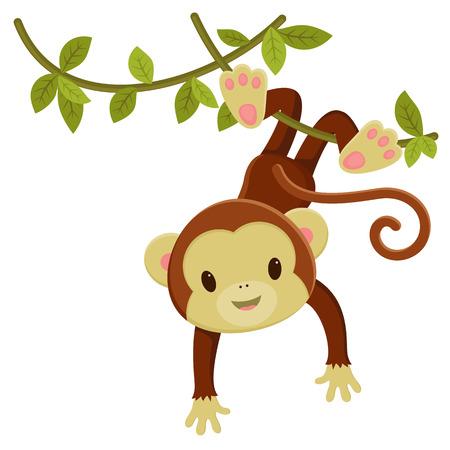 Cute cartoon monkey hanging on a liana. Vector clip art illustration