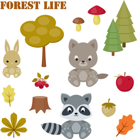 racoon: Forest life icons set. Baby animals, trees, mushrooms, leaves, berries. Isolated over white