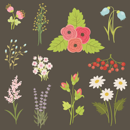 Painting flowers and berries. Beautiful hand drawn icons on dark background
