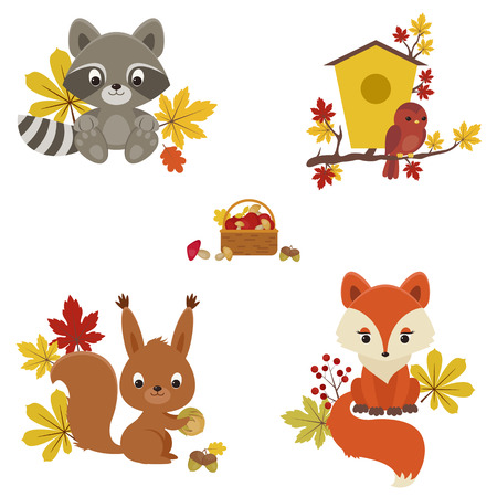 zorro: Animales de bosques en el otoño de tiempo. Mapache, pájaro, ardilla y el zorro con hojas de otoño, las setas y bayas.