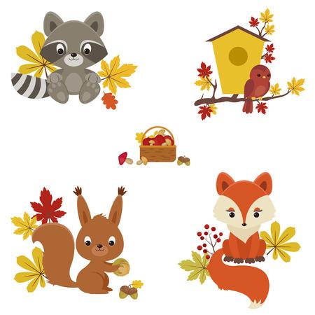 Bos dieren in het najaar de tijd. Wasbeer, vogel, eekhoorn en vos met herfstbladeren, paddenstoelen en bessen.