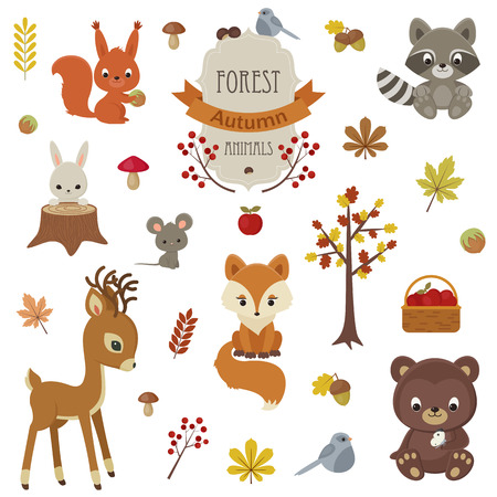 Woodland animals in autumn time. Raccoon, bunny, squirrel, fox, bird, raindeer, mouse and bear. Fall leaves, mushrooms and figments.