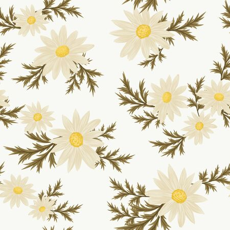 chamomile flower: Daisy floral pattern Vector seamless wallpaper.