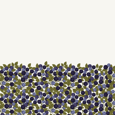 Blueberry vector background. Half is berries, half is blank for your text.