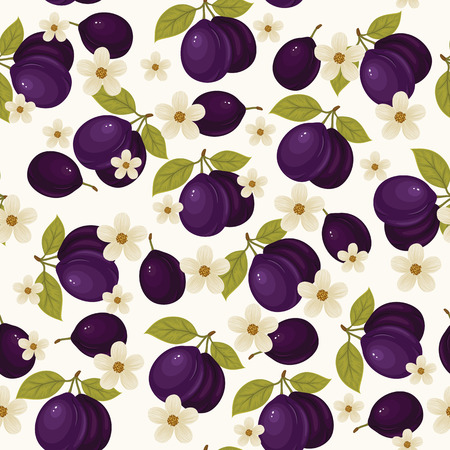 Seamless pattern with ripe plums, green leaves and white blossom on white background. Vector background. Fresh fruits. Plum pattern. Plum vector. Plum blossom. Illustration