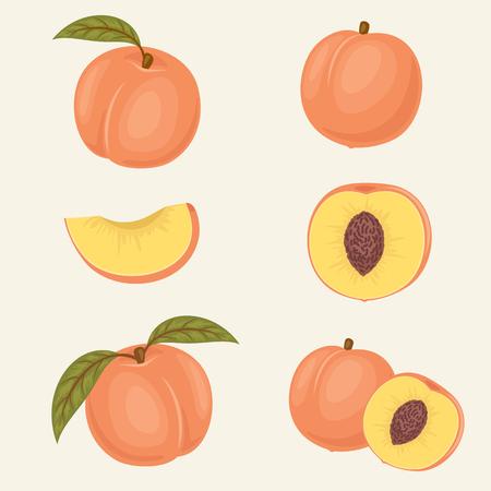 Peach Symbole. Frische Nahaufnahme Pfirsich Abbildungen. Ganze, Hälfte, in Scheiben schneiden, mit und ohne Blatt