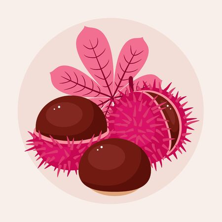 prickle: Chestnuts vector illustration. Three different pink chestnuts on light cream background. Autumnfall composition Illustration