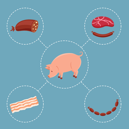 food industry: Pig and meat products. Vector icons. Belonging concept