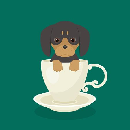 Dachshund puppy sitting in white cup. Vector art.