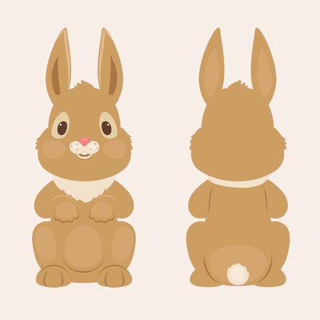 Bunnyrabbit front and back view. Vector illustration
