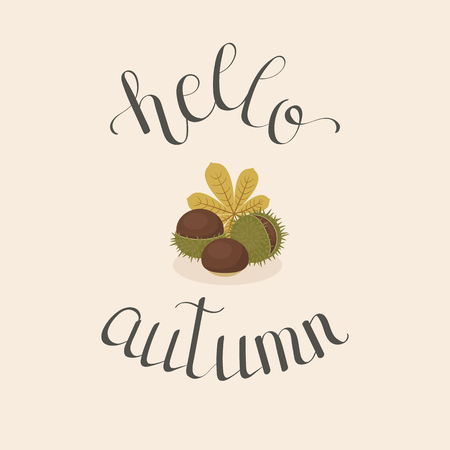 Hand drawn lettering hello autumn with chestnuts. Handwritten quote. Poster, greeting card, wall art or wallpaper template. Vector art. Ilustração
