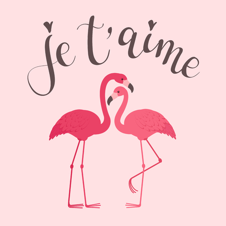 Two flamingos in love with modern calligraphy inscription in French je taime. Romantic Valentines Day greeting card template