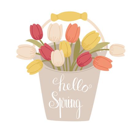 Hello Spring handlettering on the bucket of tulips. Spring concept. Cartoon handdrawn style. Vector illustration.