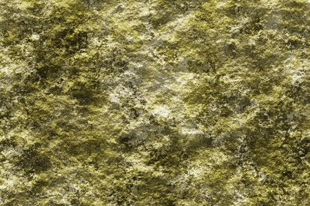 Stone with lichen 3D texture background. Realistic digitally generated closeup texture of the light rough stone with yellow green lichen.