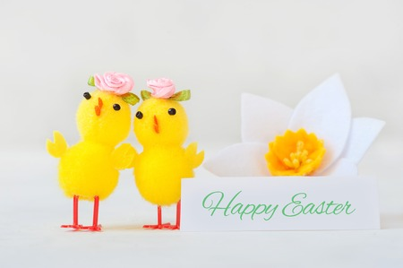 spring flowers and chickens on a white background and the inscription happy Easter . Festive Easter card