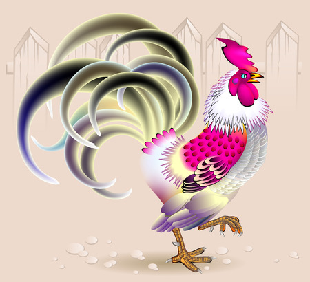 Illustration of beautiful rooster, vector cartoon image.