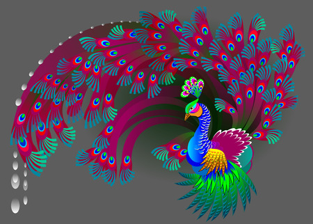 dcor: Illustration of magic peacock, vector cartoon image.