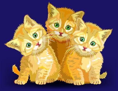 Illustration of three little kittens, vector cartoon image.