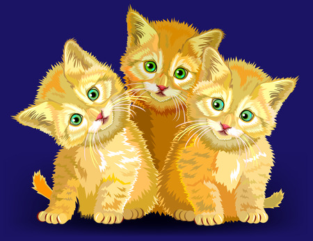 Illustration of three little kittens, vector cartoon image.