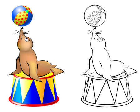 Colorful and black and white pattern seal in a circus, vector cartoon image. Illustration