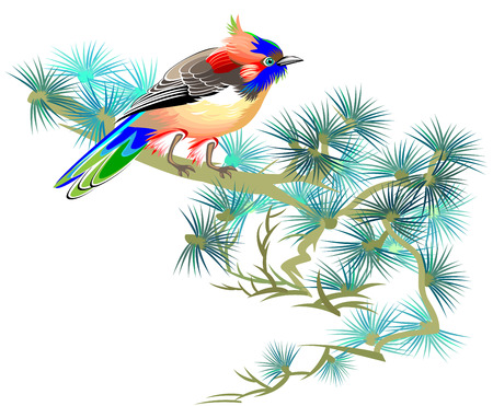 Illustration of fairyland little bird sitting on a branch of pine, vector cartoon image.