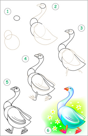 Page shows how to learn step by step to draw a goose. Developing children skills for drawing and coloring. Vector image. Illustration