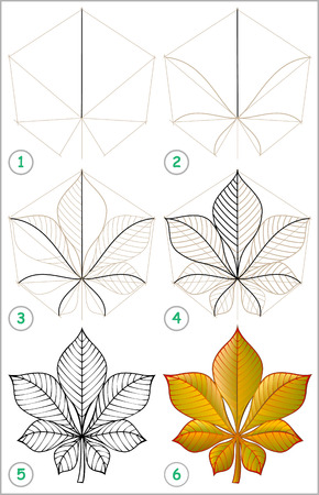 Page shows how to learn step by step to draw a chestnut leaf. Developing childrens skills for drawing and coloring. Vector image. Illustration